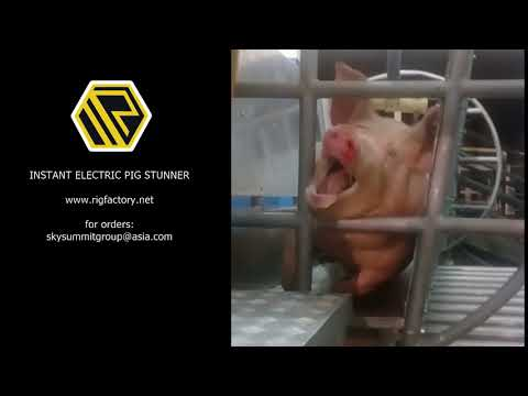Electric Pig Stunner Rig Factory supplier