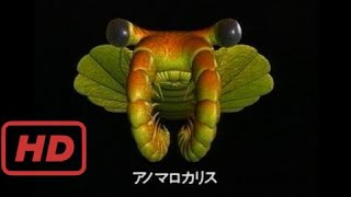 NHKスペシャル「生命」40億年はるかな旅 第2集 進化の不思議な大爆発