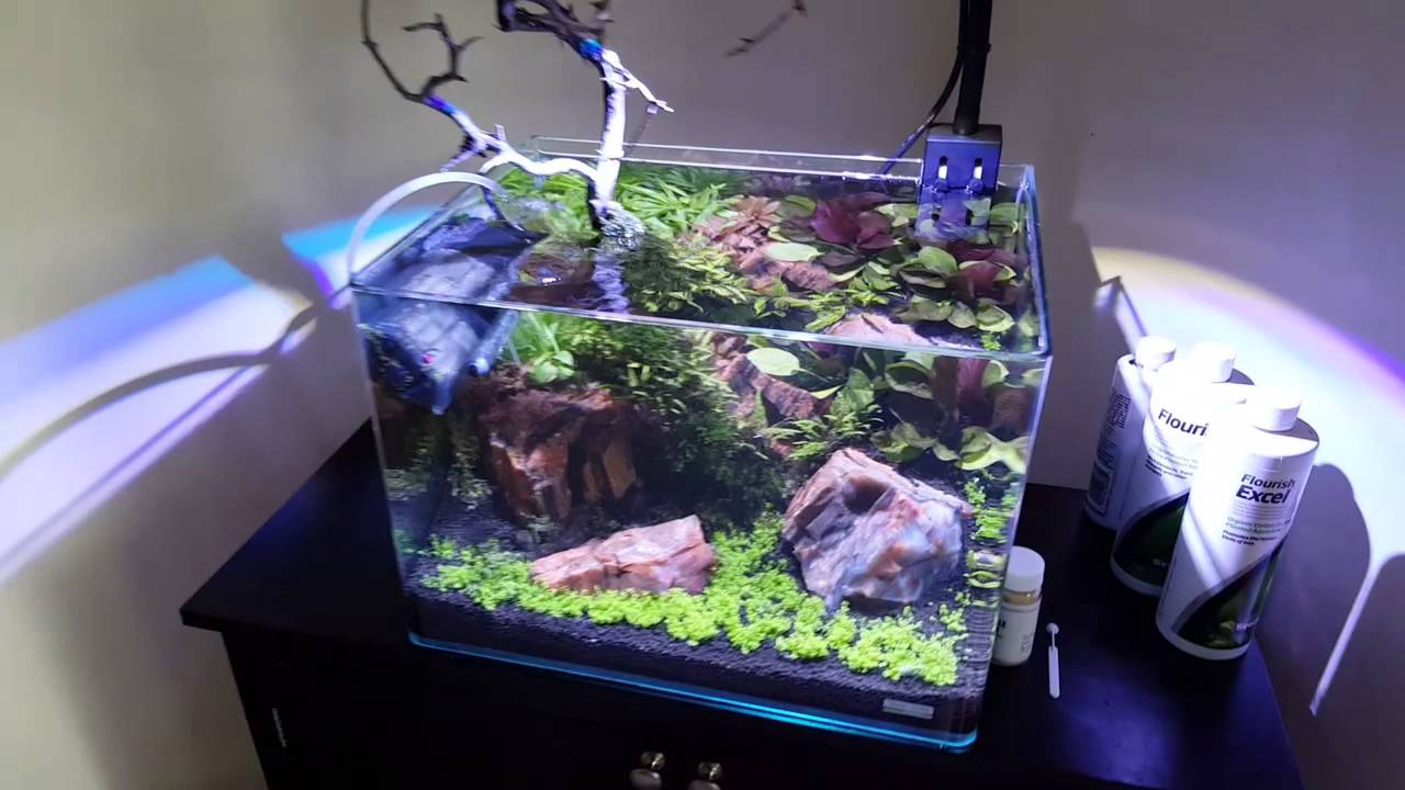 Nano Aquarium Scaped By Oliver Knott
