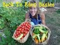 Back To Eden Gardening Basics