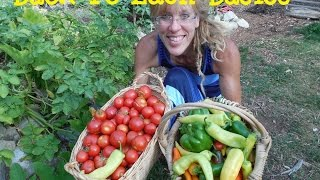 Back To Eden Gardening Basics