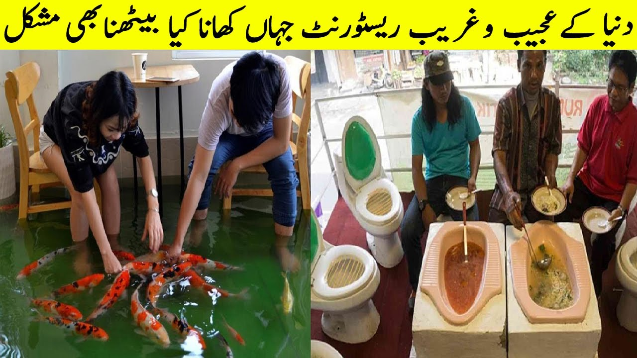 Unbelievable Restaurants Where You Can't Eat Easily  II  Most Weird Restaurants In The World