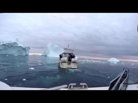 Boat tour at Ilulissat Icefjord with icebergs and a few whales