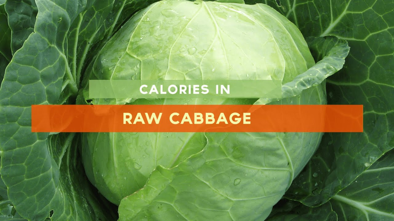 How many calories are in the cabbage