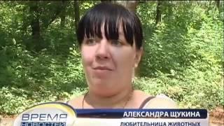 ТК Донбасс - В Луганске животные умирают от голода