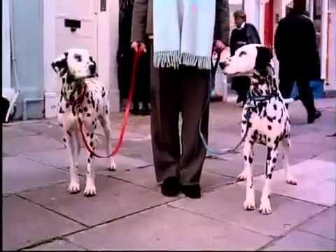 102 Dalmatians 2000 Trailer Youtube
