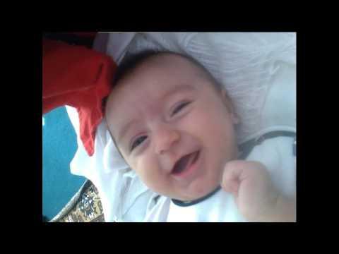 ოთოს ვიდეო 0 8 თვემდე