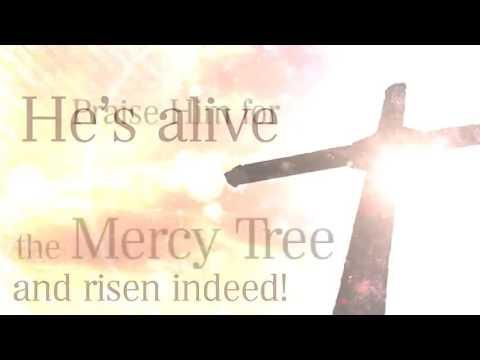 Mercy Tree   Lacey Sturm