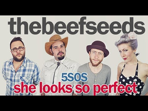 5 Seconds Of Summer - She Looks So Perfect (OFFICIAL Beef Seeds Cover)