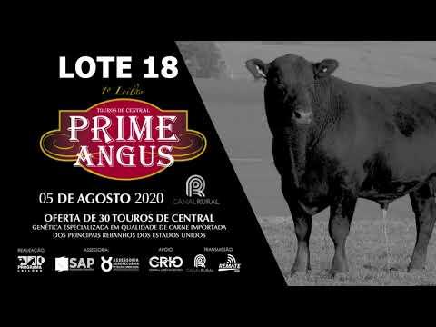 LOTE 18   BLACK OPAL TE913 PARRILERO Prod  Agência El Campo