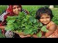 Village Food Pui Shak Macher Matha Recipe Cooking By 5 Years Kid FARM FRESH Basella Alba Curry