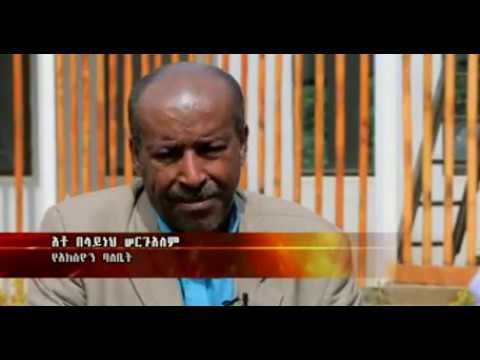Walta Tv Documentry Amharic ( 10 Years With Out Justice)