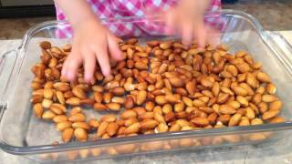 Sprouted & Roasted Almonds