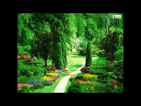 Urban Musique Feat Phila-Forward(Main Mix)