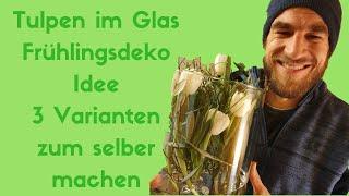 Tulpen im Glas - Frühlings Dekoidee - DIY Anleitung - 3 Frühlings Deko Ideen zum selber machen