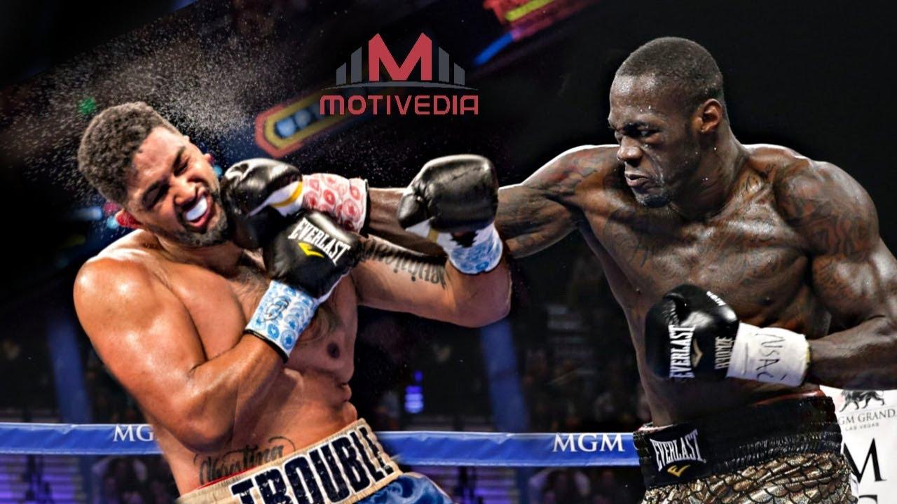 Boxer Wilder