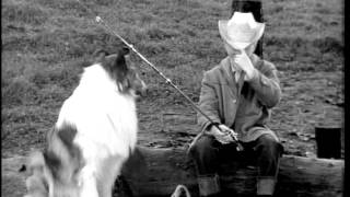 Lassie And The Tiger - 27 May 1962 (preview Clip)