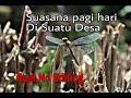 Suasana Di Pegunungan Disekitar Rumah Suara Kokok Ayam Suara Burung Suara Air Sungai Jadi Tenang  Mp3 - Mp4 Download
