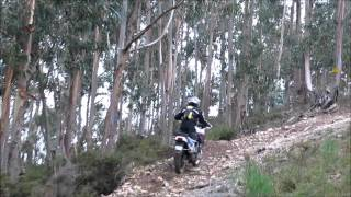 Africa Twin - Off Road Valongo
