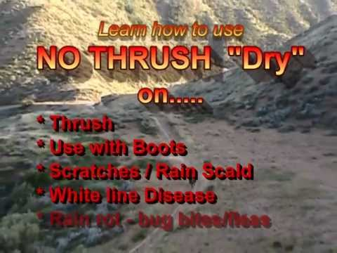 NO THRUSH - Learn all the uses of NT!