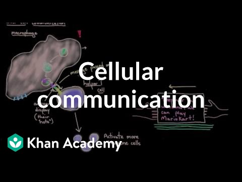 Cellular communication | Cells | MCAT | Khan Academy