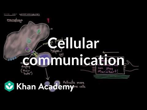 Cellular Communication | Cells | MCAT | Khan Academy