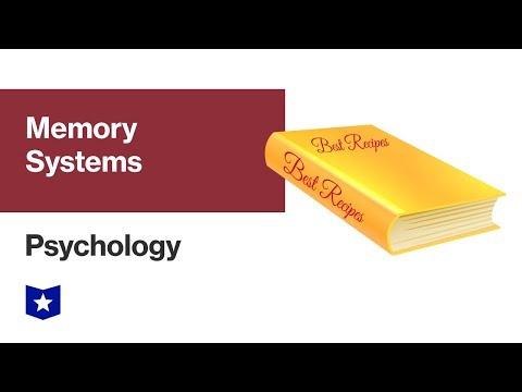 Memory Systems | Psychology