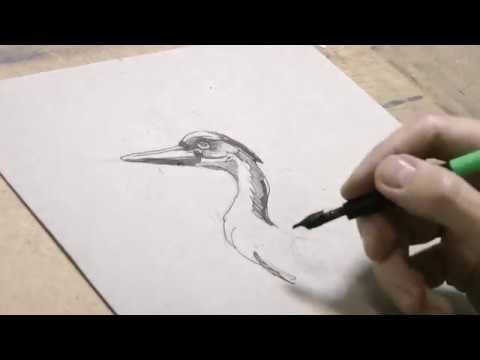 Бесплатный обучение рисования спб сертификат обучения скачать бесплатно