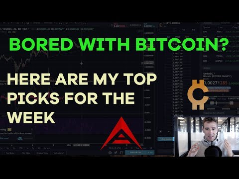 Bored With Bitcoin? Here Are My Picks For The Week, WSJournal + BTC, Seed Investing - CMTV Ep44