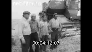 1980г. колхоз Рассвет Михайловский район Волгоградская обл