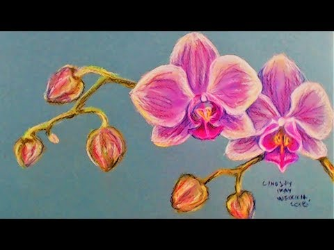 LIVE! Orchid Flowers in Pastel // 12:30pm ET // And Drawing Supply Giveaway!
