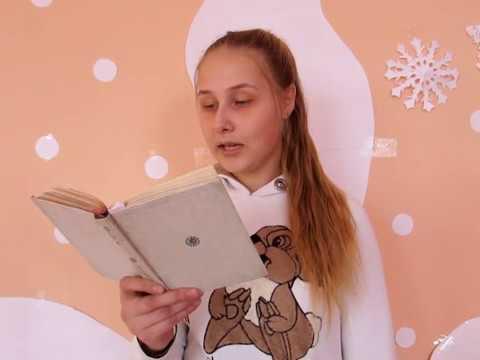 Изображение предпросмотра прочтения – ВероникаШмарева читает произведение «Близнецы» Ф.И.Тютчева