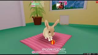 Детские игры покорми кролика, уход за питомцем PC GAMERS