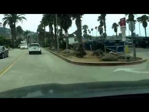 Jonathan Fibonojji ~ Kellogg Park ~ La Jolla Shores Concierge Service  ~ Parking, Pizza, Cannabis