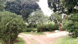 Colonial Bungalow : Life of a Tea Garden Manager