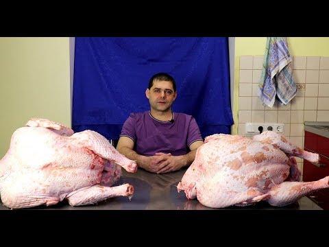 Индюки Хайбрид Конвертер ч.10 Мясо.
