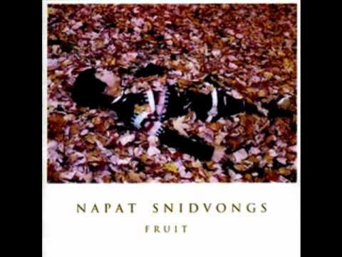 Napat Snidvongs - Along The Way