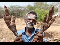 Leg leg leg !!! Unseen Leg Soup Prepared by my Daddy Arumugam / Village food factory