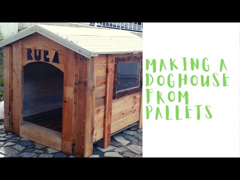 Building doghouse using pallets and nails