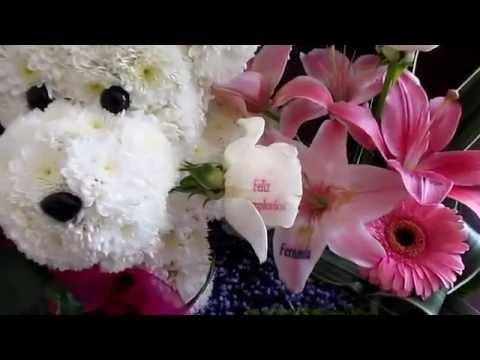 Perrito De Flores Con Rosas Impresas