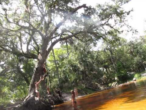 FLORIDA SHARK ATTACKS IN BROAD DAYLIGHT 5 FEET FROM SHORE FLORIDA BEACHKaynak: YouTube · Süre: 2 dakika15 saniye