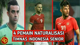 4 Pemain Naturalisasi Resmi Timnas Indonesia di Era Simon McMenemy