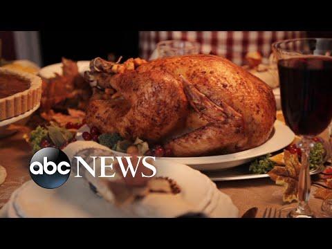 Leah Tyler Blog - Bad News Before Thanksgiving...Turkey Dangerous?