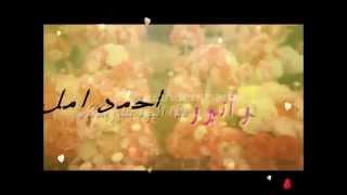 عقد  قران   امل الشعفي  على الشا  ب احمد محمد الشعفي 1