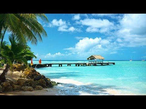 Vacation in Guyana, Trinidad , and Tobago!