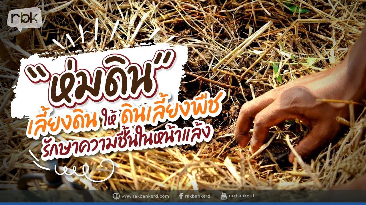 เทคนิคห่มดิน เลี้ยงดินให้ดินเลี้ยงพืช แบบสวนประกอบฟาร์ม
