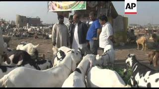 Livestock expensive as people prepare for Muslim festival of Eid