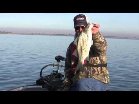 Season Chasers Nuclear Fun Fishing 136