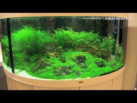 Aquarium ideas from InterZoo 2014 (pt.36) - JUWEL Trigon and Vio aquariums