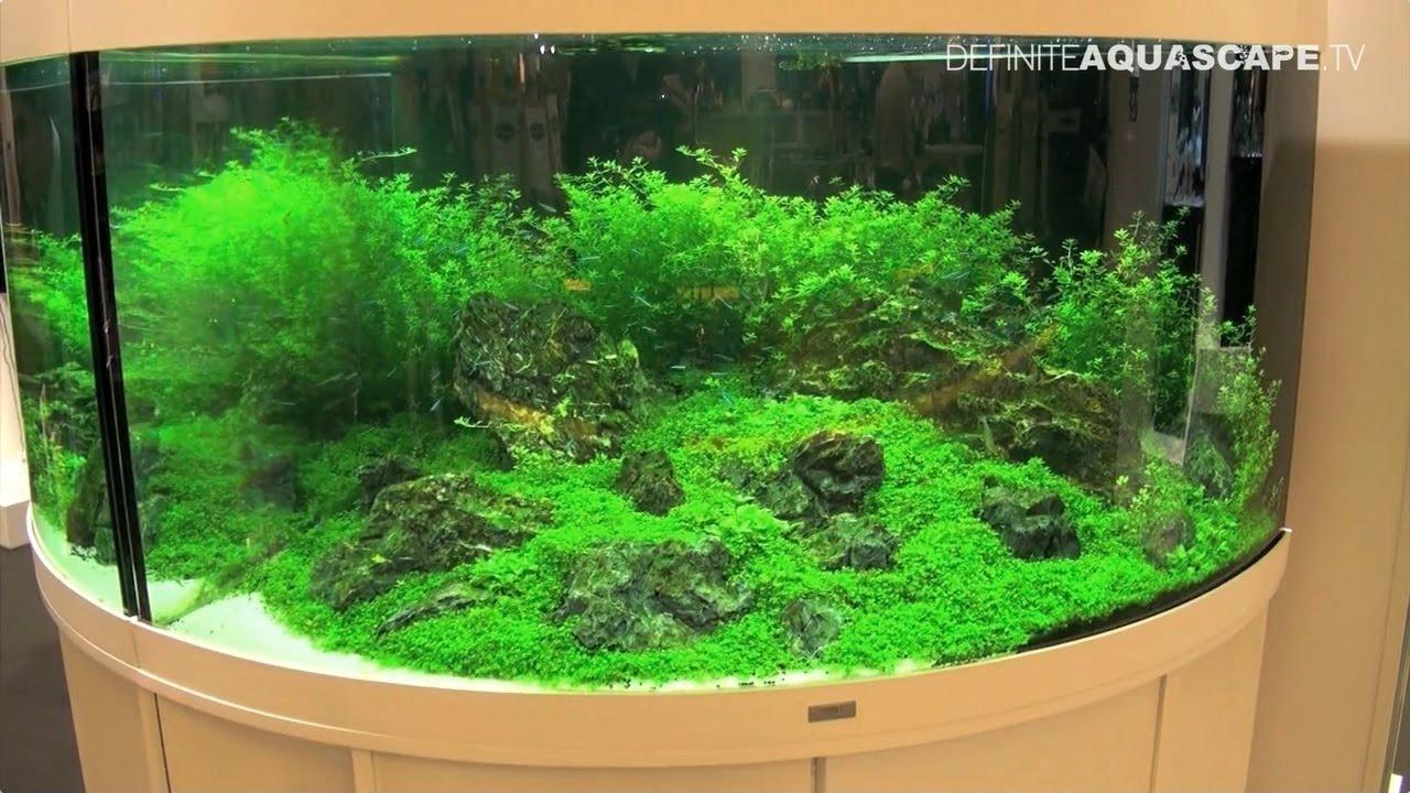 aquarium ideas from interzoo 2014 juwel trigon and vio aquariums youtube. Black Bedroom Furniture Sets. Home Design Ideas